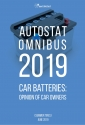 """AUTOSTAT OMNIBUS - 2019"" Car batteries: opinion of car owners (spring wave)"