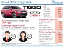 What is the portrait of Chery Tiggo owners?