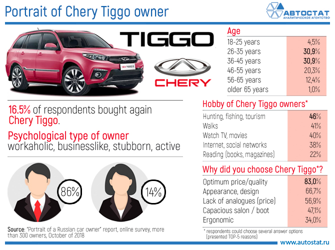 Portrait of Chery Tiggo owner.jpg